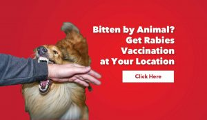 rabies vaccination service, rabies vaccine, vaccination, human rabies immunoglobulin, medi-call, medicall