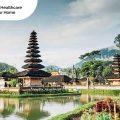Get Rabies Immunoglobulin Injection in Bali, Medicall, Medi-Call